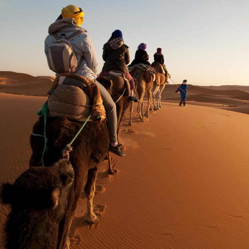 20200201.S.200723---2020Destinations-(Africa)Egypt